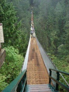 Forest Gulp1 225x300 Top 5 Most Scariest Bridges In The World