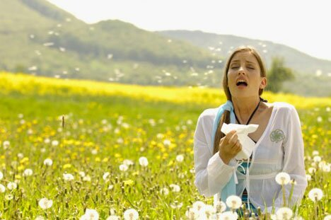 allergy 10 Interesting Facts About Global Warming