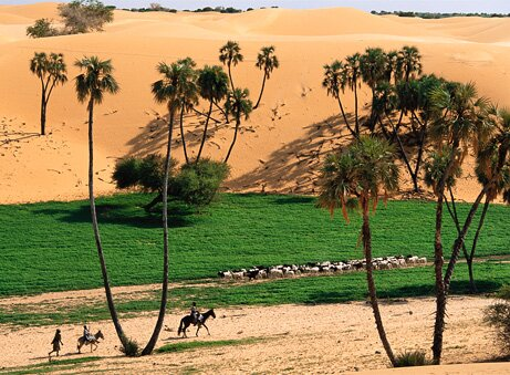 global warming effect greener sahara 10 Interesting Facts About Global Warming
