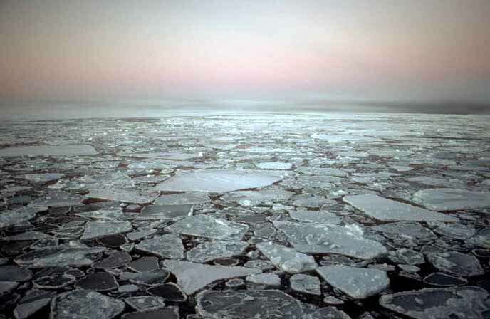 interglacial period 10 Interesting Facts About Global Warming