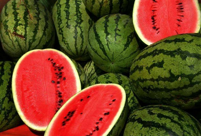 interesting nutrition fact watermelon 10 Interesting Watermelon Nutrition Facts
