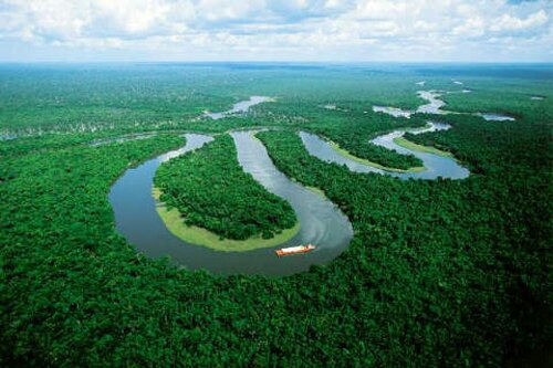 Amazon River facts: curvy flow of water
