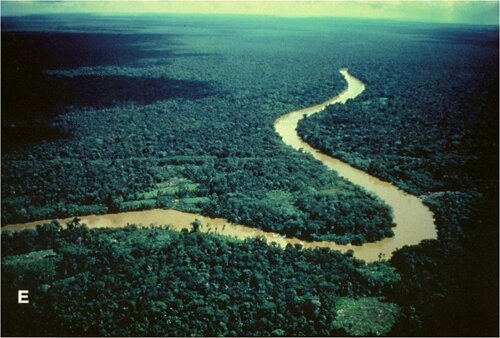 Amazon River facts: length