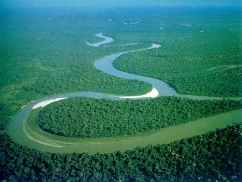 Amazon River facts: the river sea