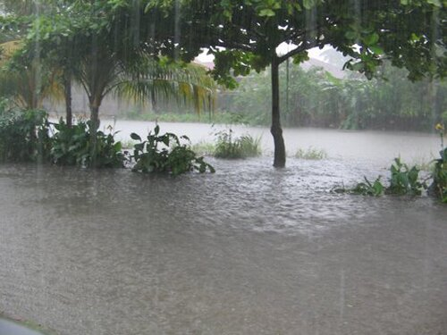 Flood facts: Heavy rain