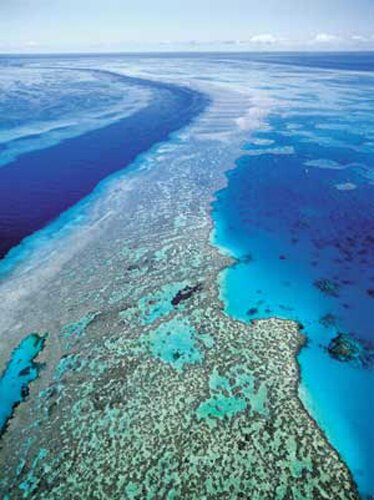 Ocean facts great barrier reef 10 Interesting Facts about Ocean