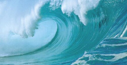 Ocean facts wave 10 Interesting Facts about Ocean