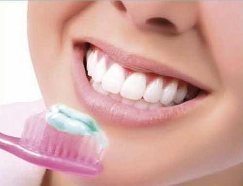 mouth facts Tooth Gum 10 Interesting Facts about the Mouth