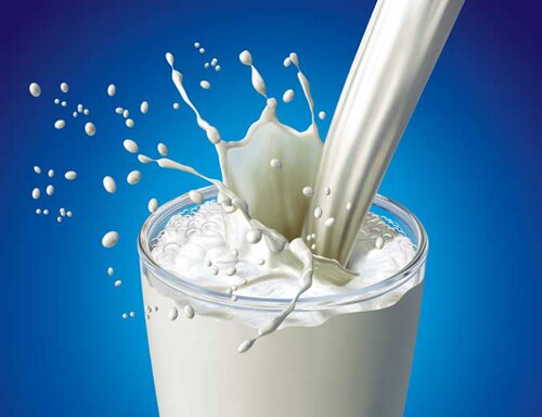 Calcium facts milk 10 Interesting Facts about Calcium