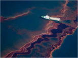 10 Interesting Facts about The BP Oil Spill