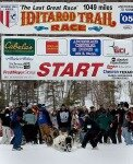 10 Interesting Facts about the Iditarod Race