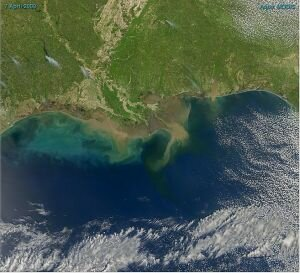 10 Interesting Facts about the Gulf of Mexico