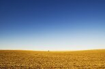 10 Interesting Facts about the Great Plains