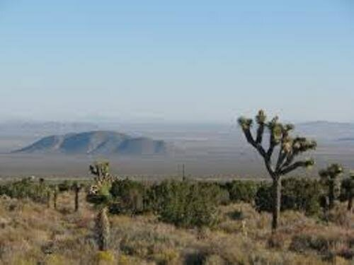 Facts about the Mojave Desert