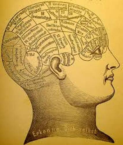Mind Image