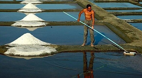 Top 10 Most Ridiculous Taxes in the World Salt Tax