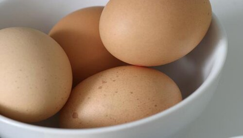 Egg nutrition fact: Egg from old and young hen