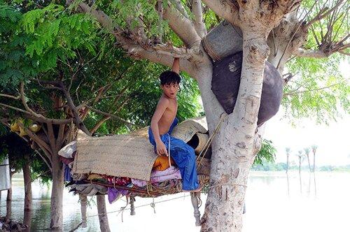 Flood facts: a kid on a tree