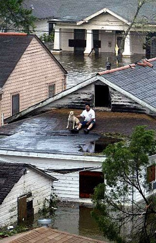 Hurricane Katrina facts: refugee