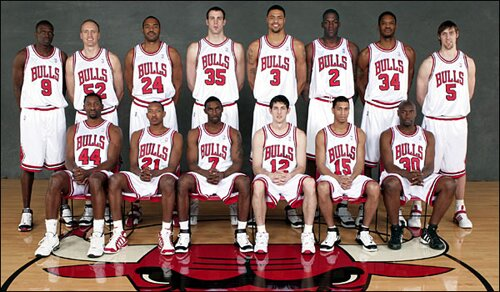 Illinois facts: Chicago Bulls basketball team