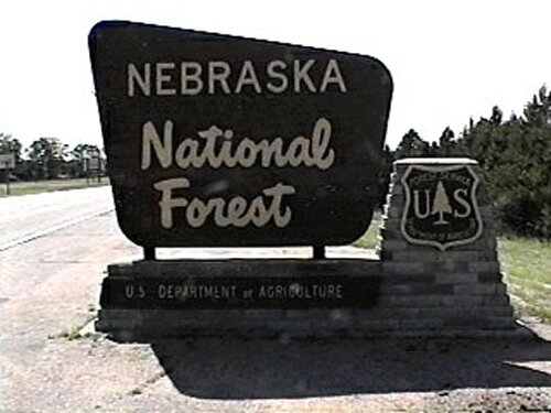 Nebraska facts: Halsey National Forrest
