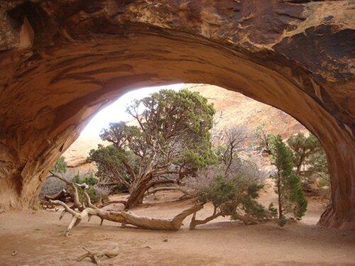 New Mexico facts: Navaj Arch