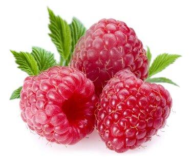 Washington facts: red raspberries