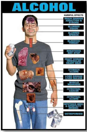Alcohol facts: alcohol effect