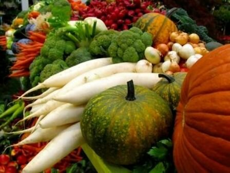 Facts about vegetables - Vegetable