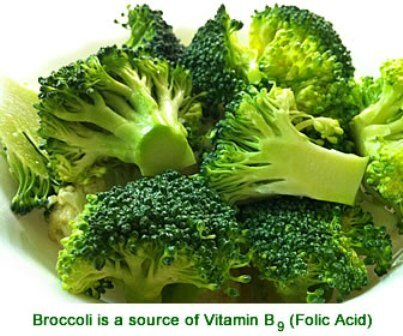 Facts about vitamin B - Broccoli