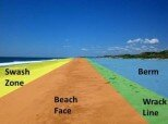 10 Interesting Facts about the Beach