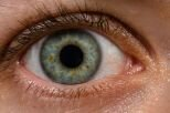 10 Interesting Facts about The Eye