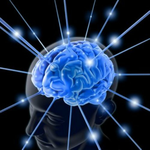 Facts about the Mind