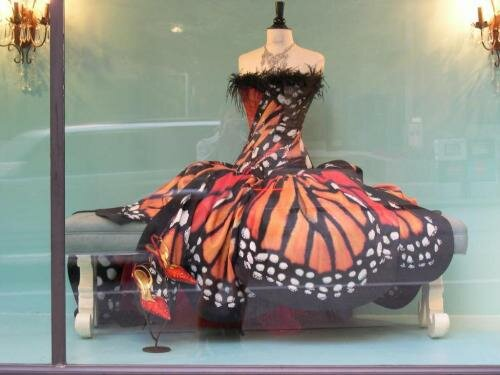 Monarch Butterfly Clothes