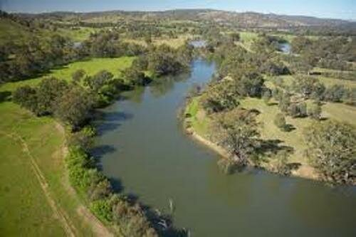 Murray River Pic